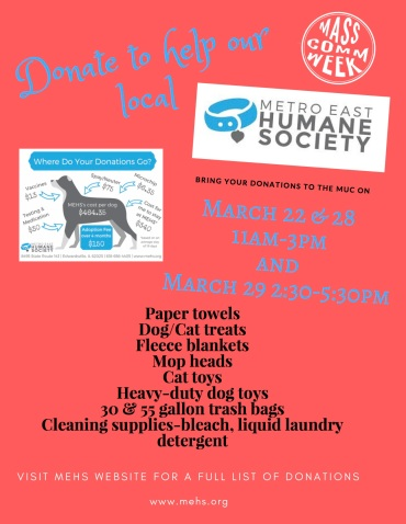 MCW Service Flyer